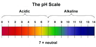 141128 Phil Holliday - pH scale