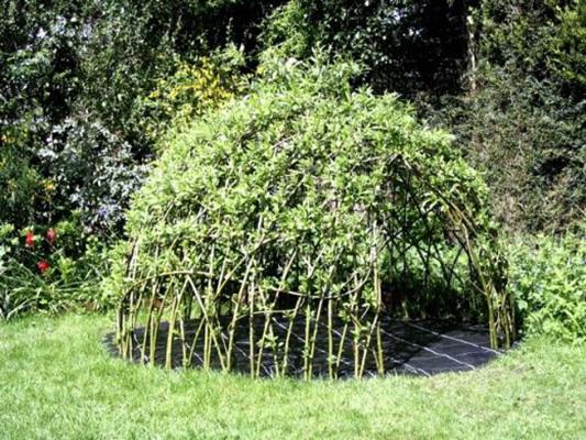 Grow-your-own-playhouse-or-den-2