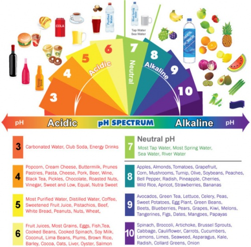 acidic, alkaline, ph balance, body ph balance, acidic body